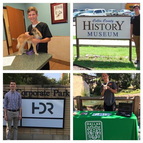 Interns at Animal Hospital, History Museum, HDR and Dallas Zoo