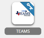 teams app in webdesk