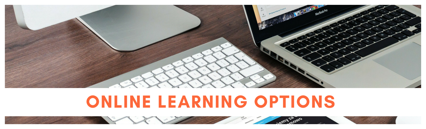 Online Learning Options